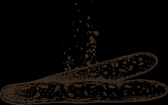 Gressins illustration